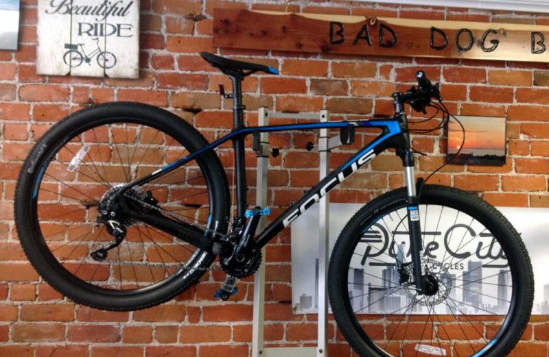 Focus Raven 29r 6.0